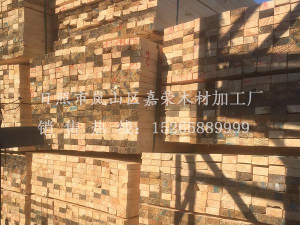樟松千亿国际娱乐网址图片