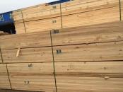 铁杉建筑木方